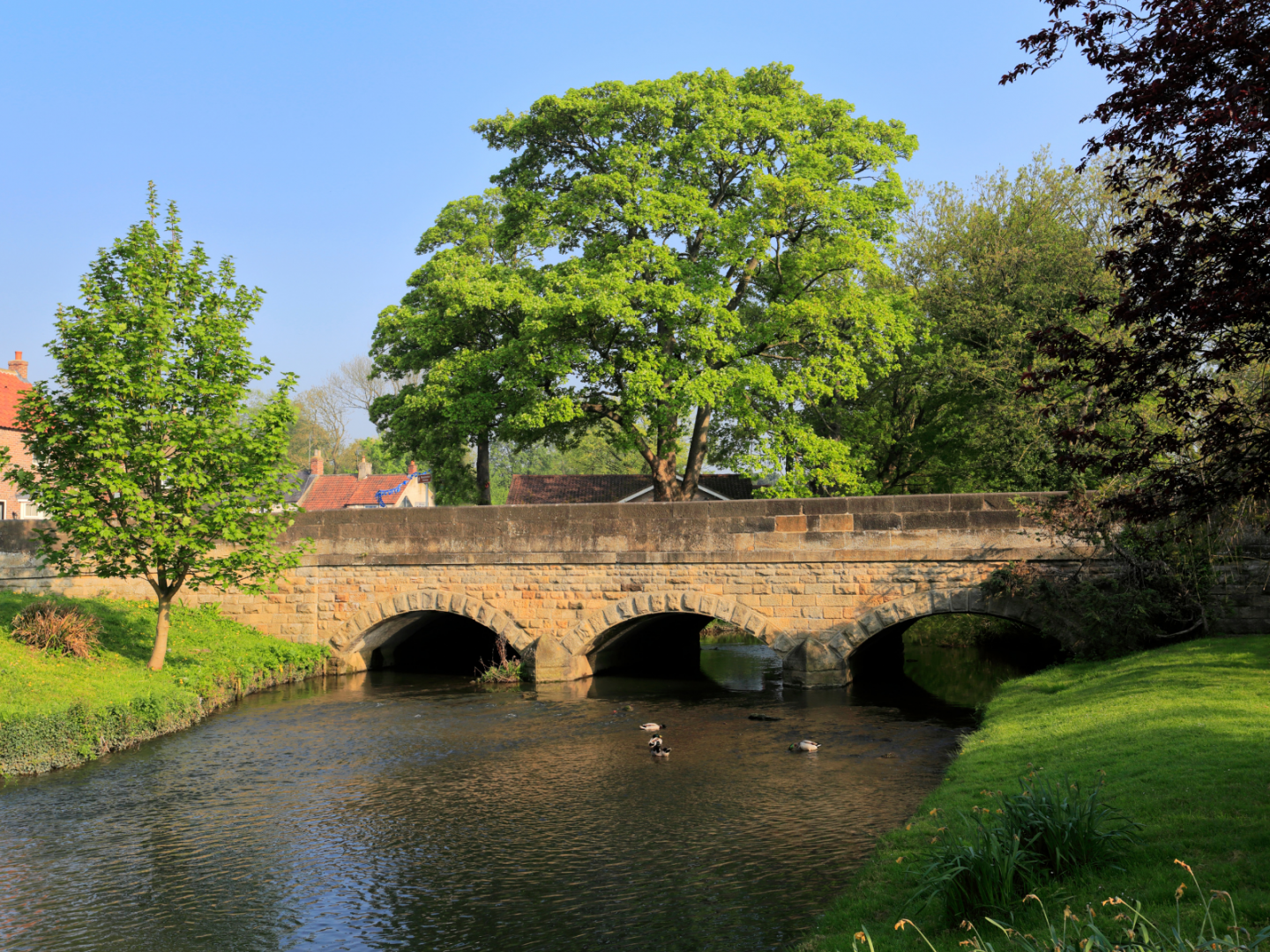 Area Guides for North Yorkshire - Bedale (1)
