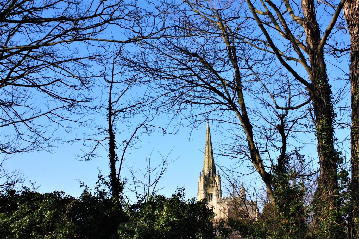 Area Guides for Saffron Walden (1)