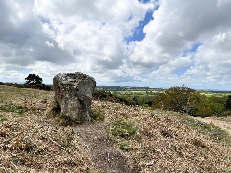 Area Guides for Bere Regis (3)