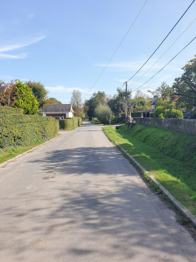 Area Guide for Winterborne Houghton