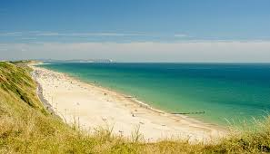 Area Guide for Southbourne