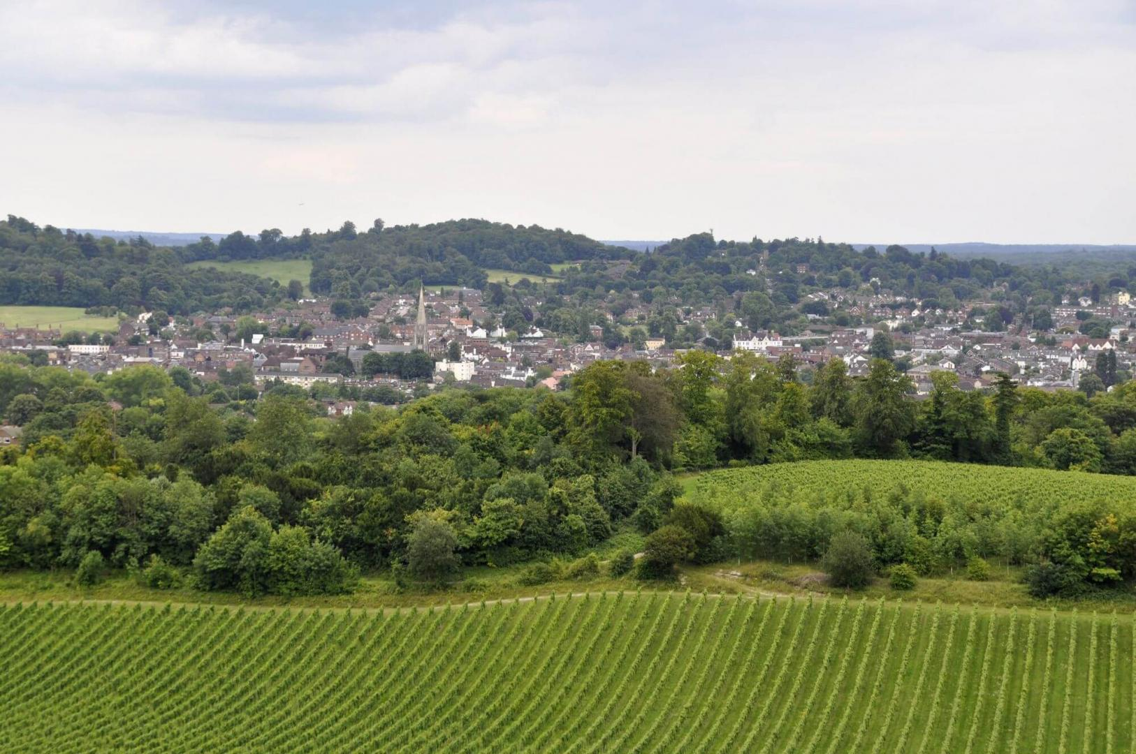Area Guides for Dorking (3)