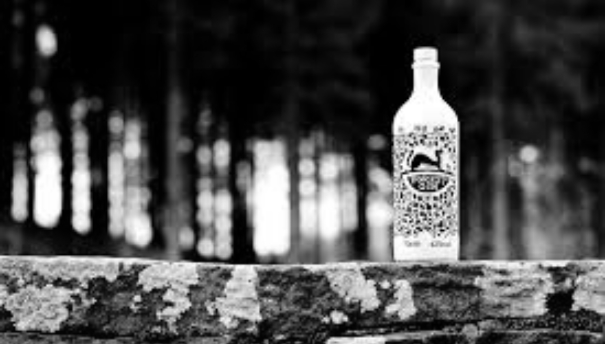 Forest Gin in Macclesfield