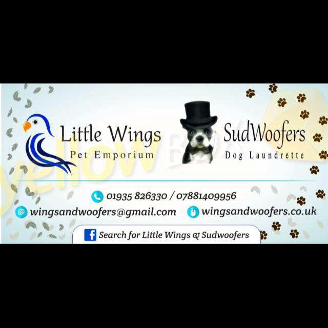Little Wings and Sudwoofers in Martock (1)