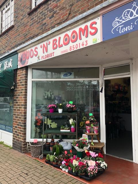 Buds 'n' Blooms in East Preston